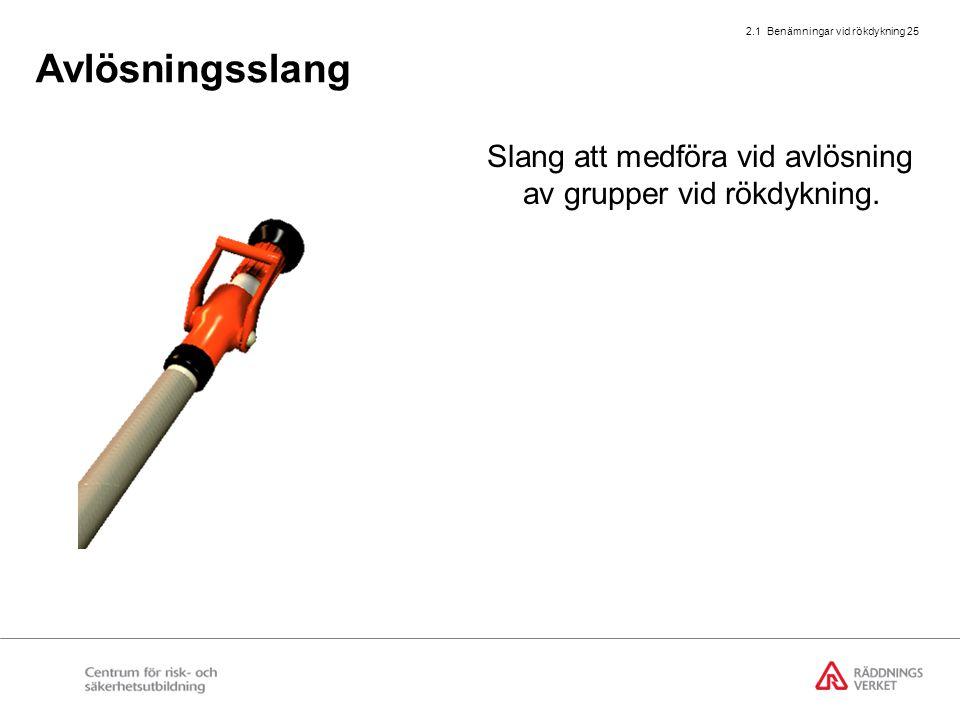 Utbildning rökdykarledning