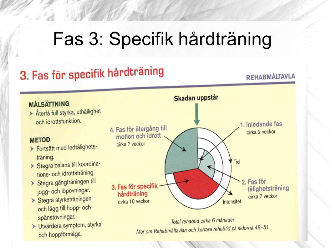 Fas 3: Specifik hårdträning