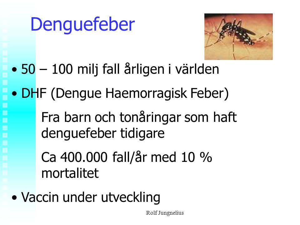Denguefeber 50 – 100 milj fall årligen i världen