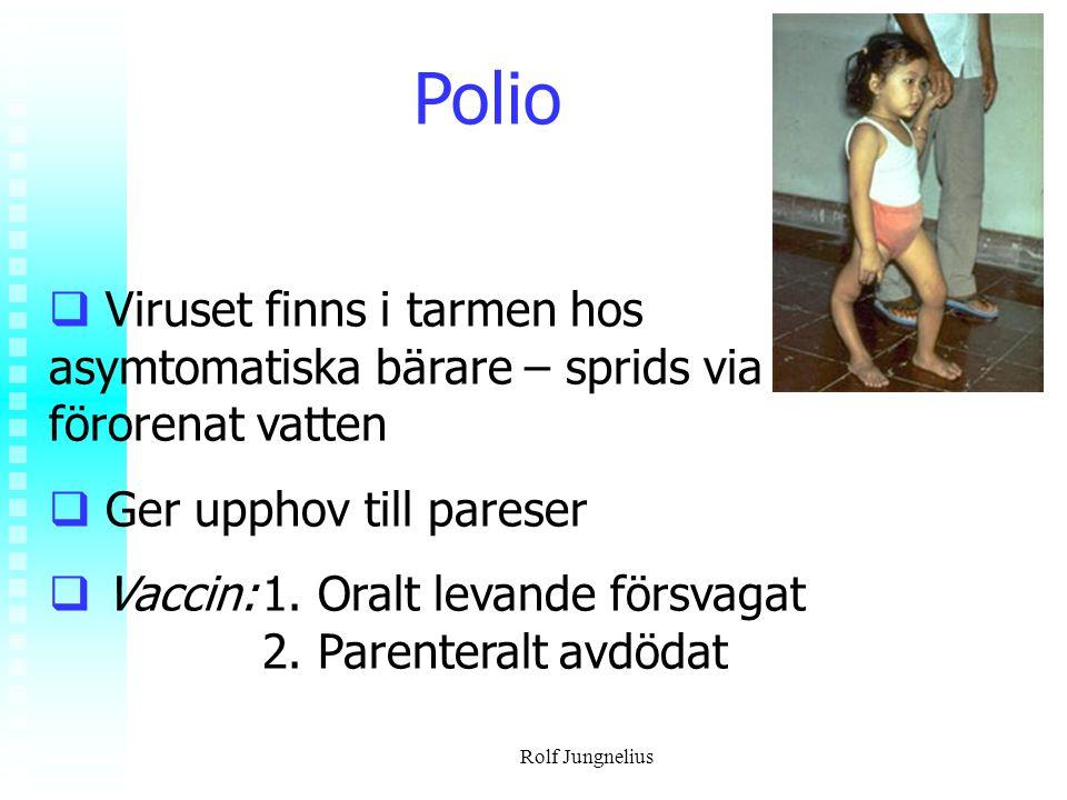 Polio Viruset finns i tarmen hos asymtomatiska bärare – sprids via förorenat vatten. Ger upphov till pareser.