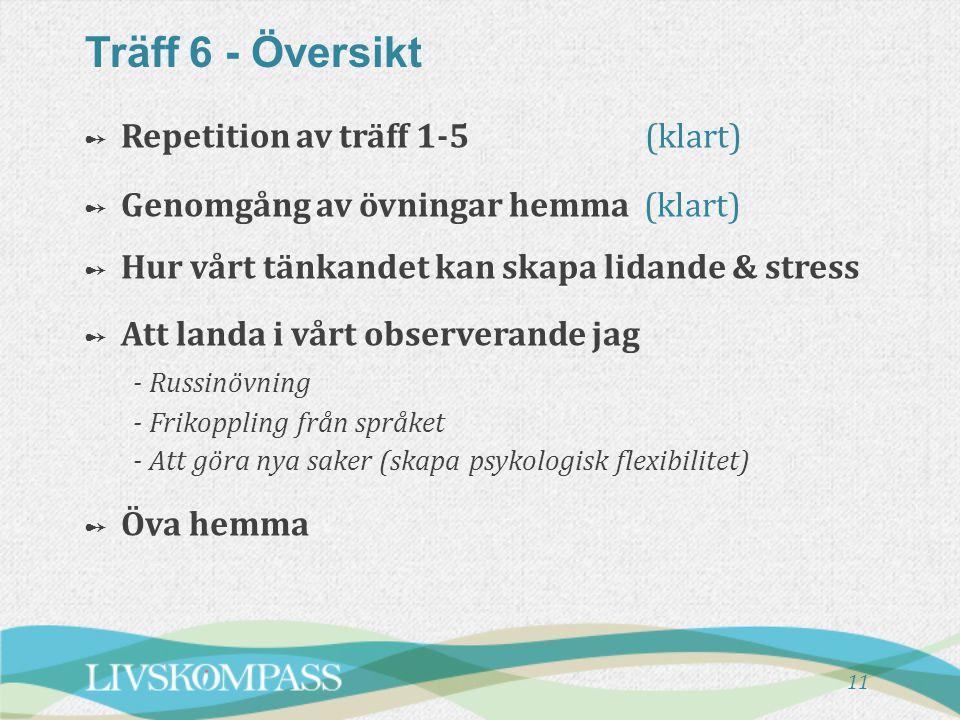 Träff 6 - Översikt - Russinövning Repetition av träff 1-5 (klart)