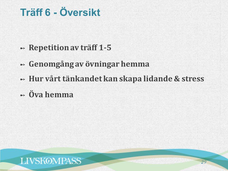 Träff 6 - Översikt Repetition av träff 1-5 Genomgång av övningar hemma