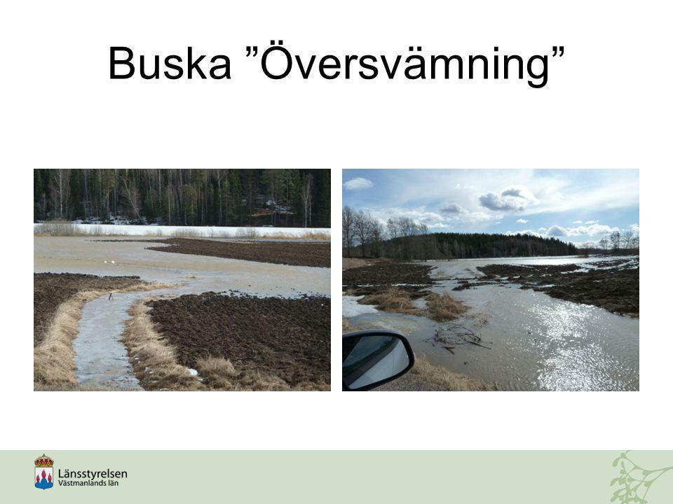 Buska Översvämning