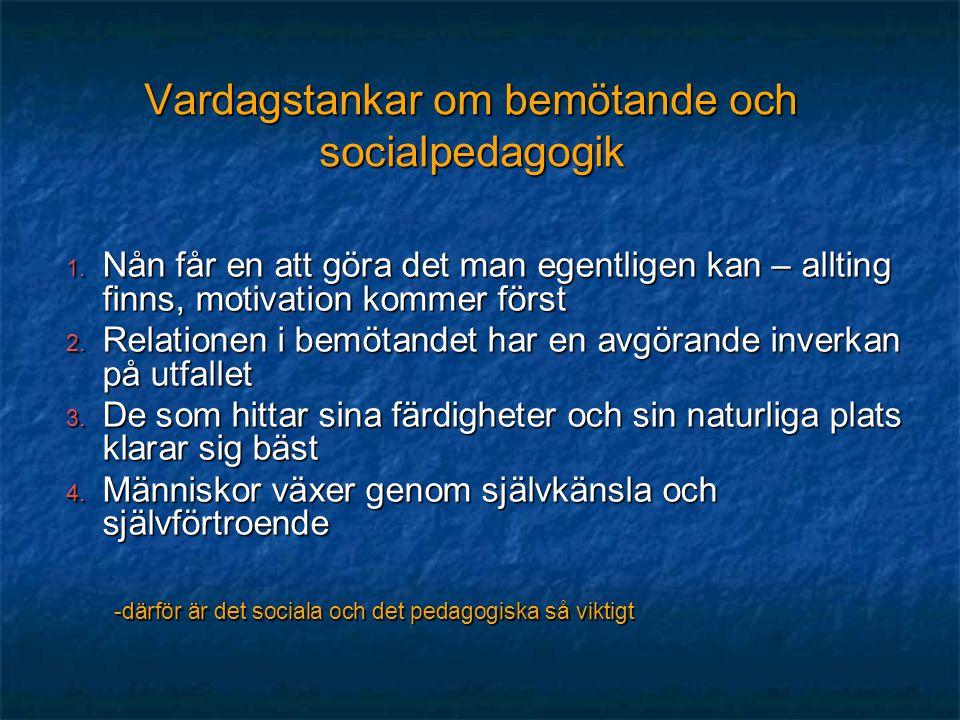 Vardagstankar om bemötande och socialpedagogik