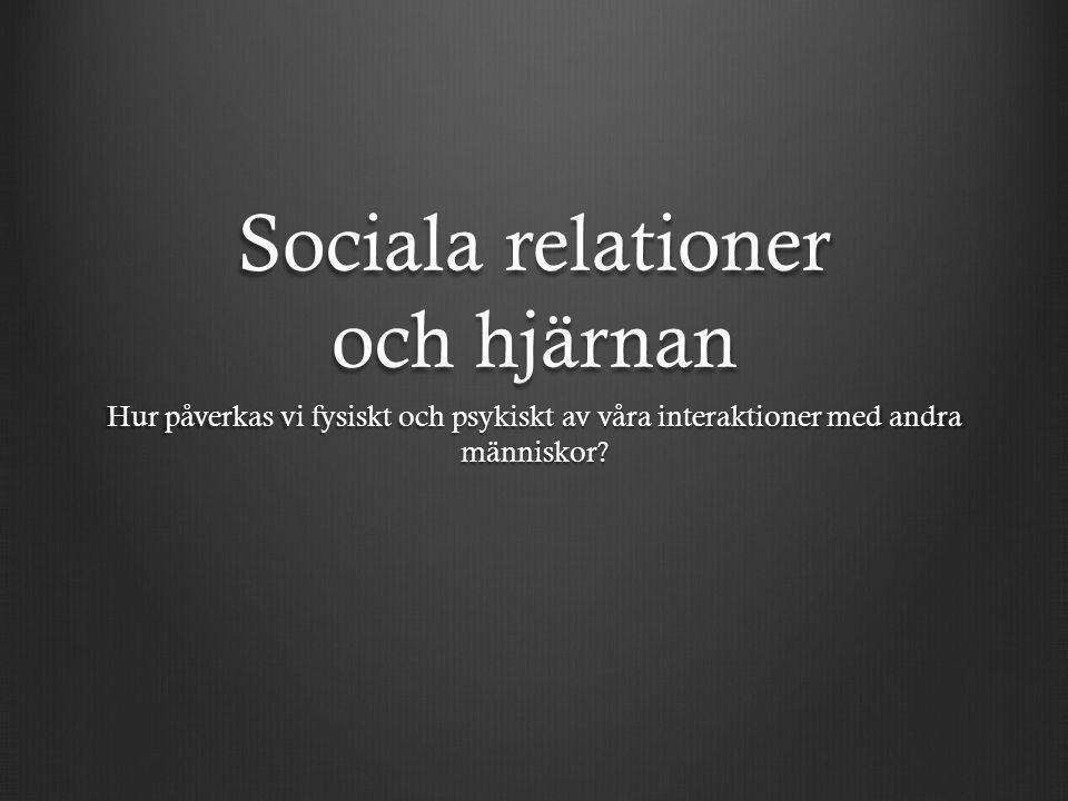 Sociala relationer och hjärnan