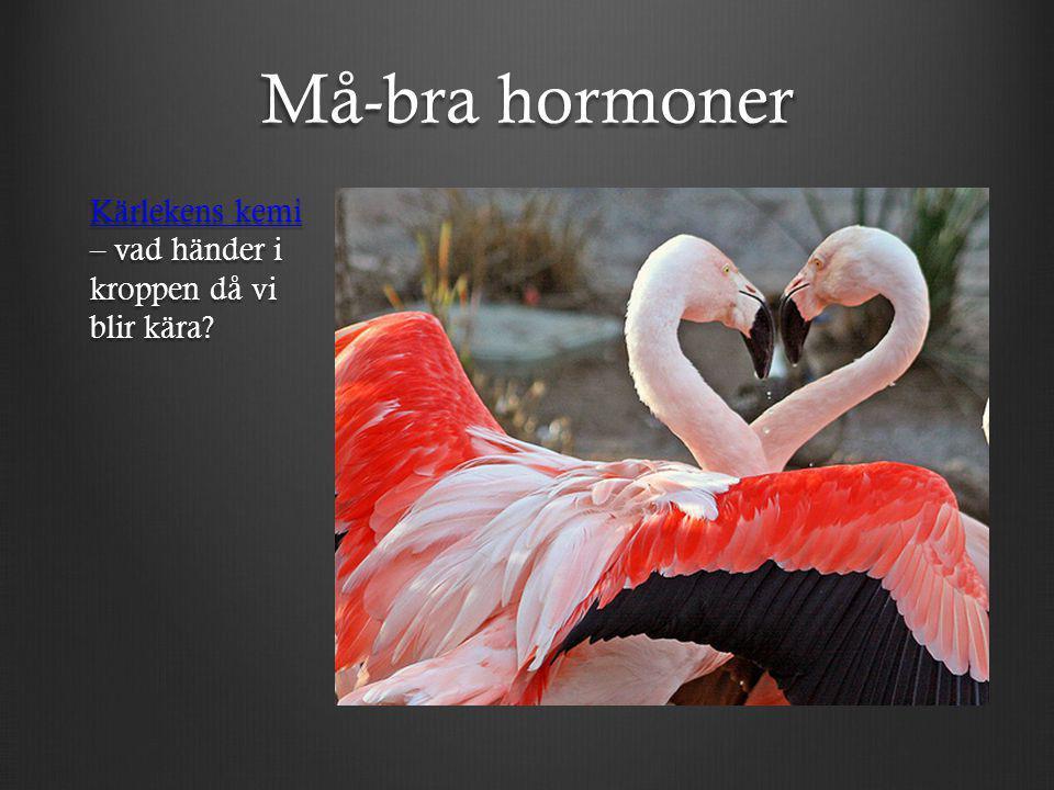 Må-bra hormoner Kärlekens kemi – vad händer i kroppen då vi blir kära