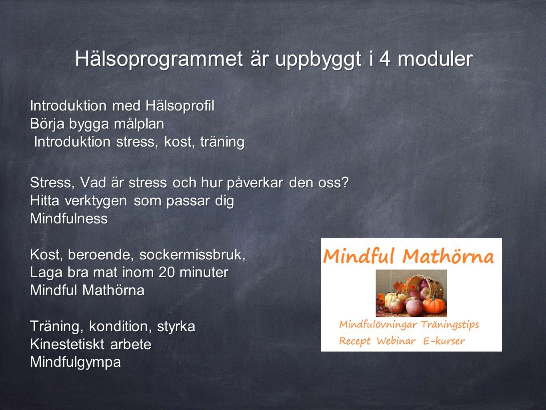 Hälsoprogrammet är uppbyggt i 4 moduler