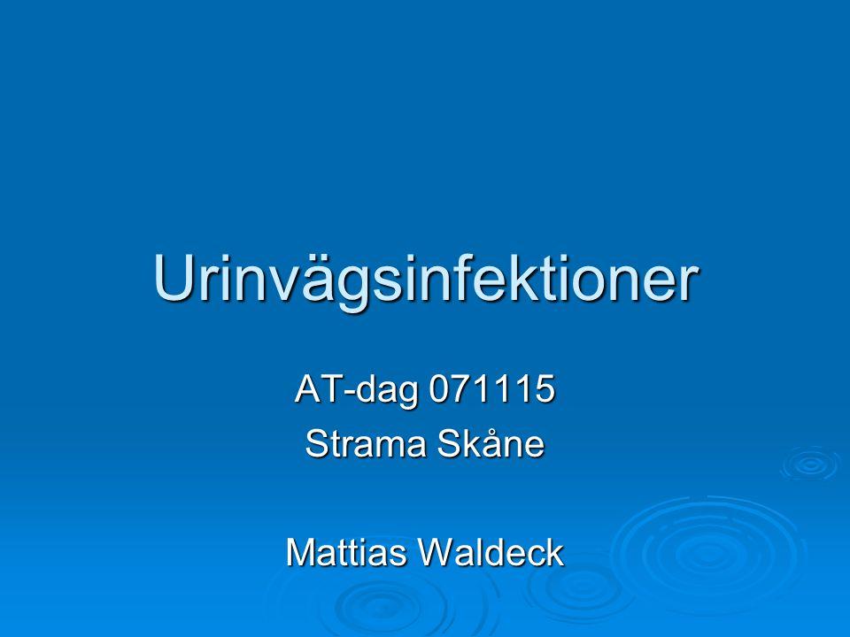 AT-dag 071115 Strama Skåne Mattias Waldeck
