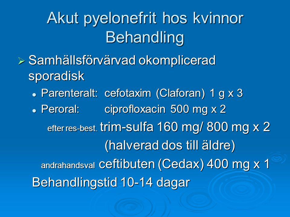 Akut pyelonefrit hos kvinnor Behandling