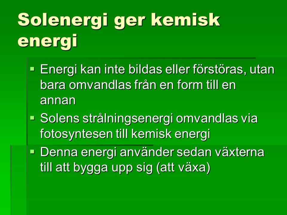 Solenergi ger kemisk energi