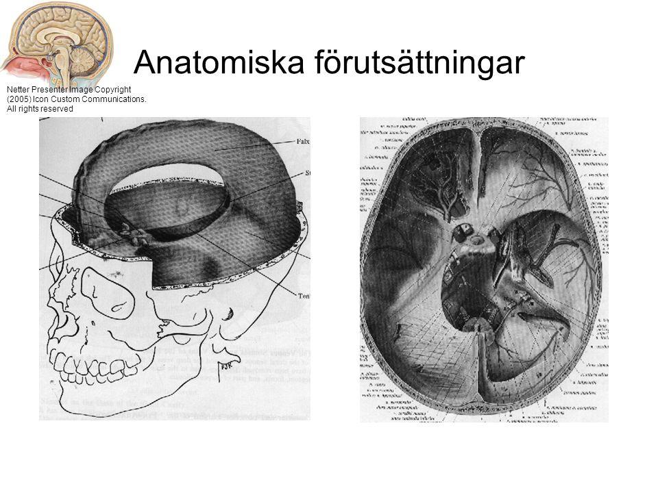 Anatomiska förutsättningar