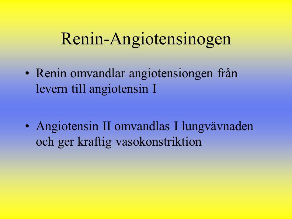 Renin-Angiotensinogen