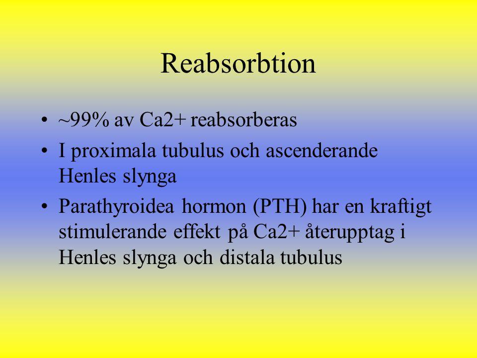Reabsorbtion ~99% av Ca2+ reabsorberas