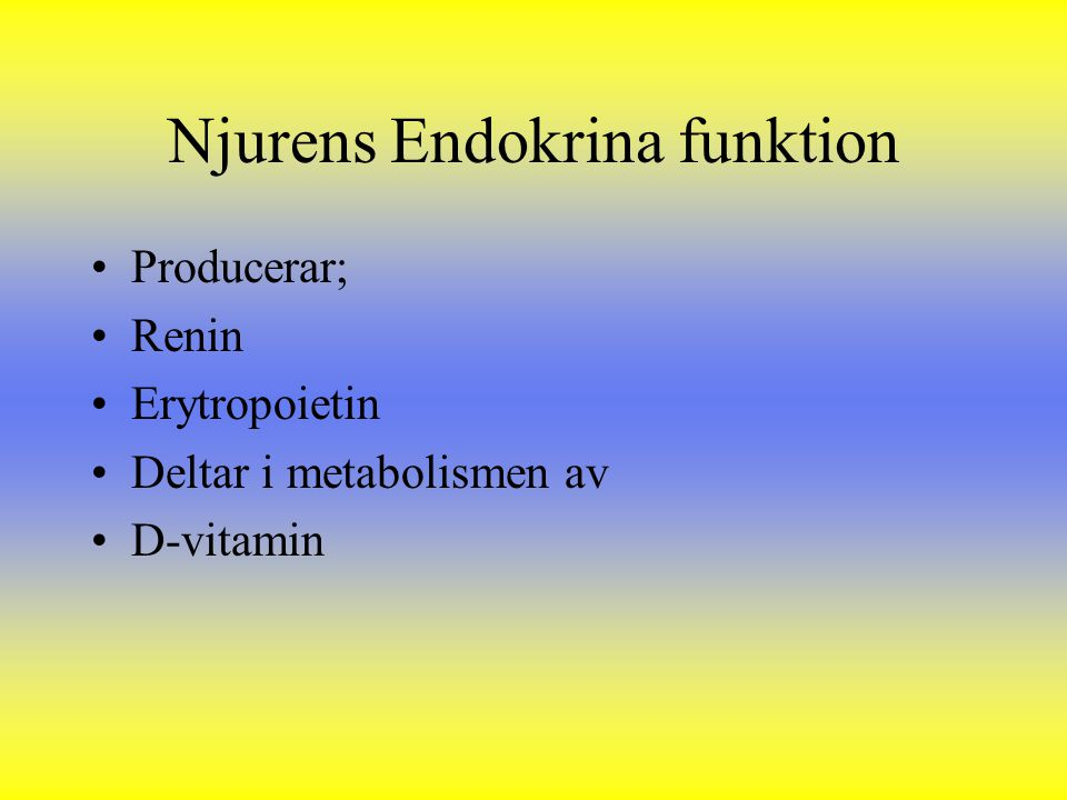 Njurens Endokrina funktion