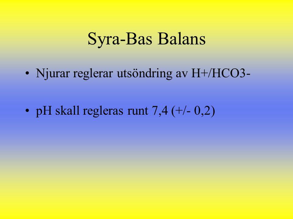 Syra-Bas Balans Njurar reglerar utsöndring av H+/HCO3-