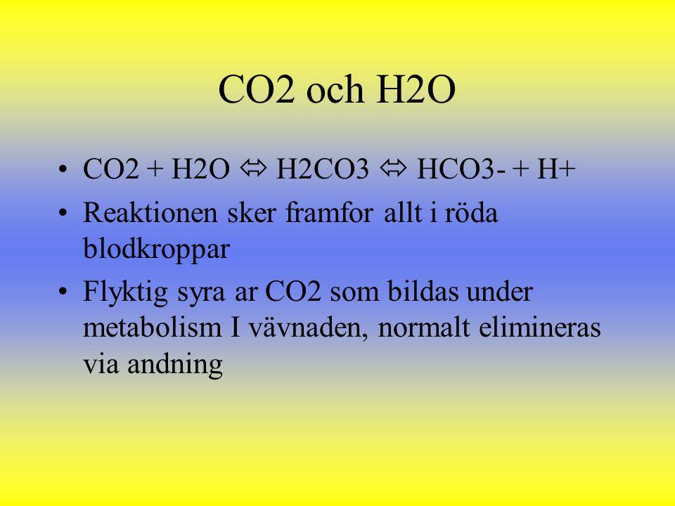 CO2 och H2O CO2 + H2O  H2CO3  HCO3- + H+