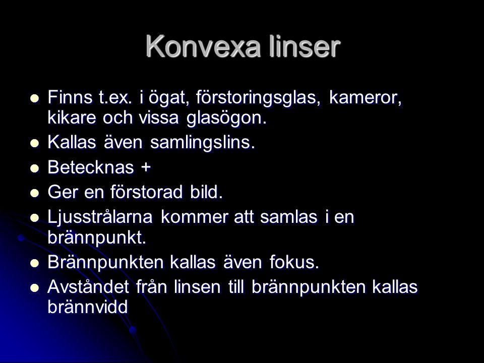 Konvexa linser Finns t.ex. i ögat, förstoringsglas, kameror, kikare och vissa glasögon. Kallas även samlingslins.