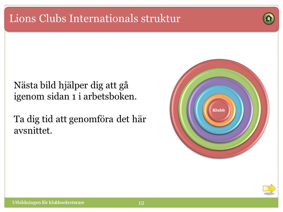 Lions Clubs Internationals struktur