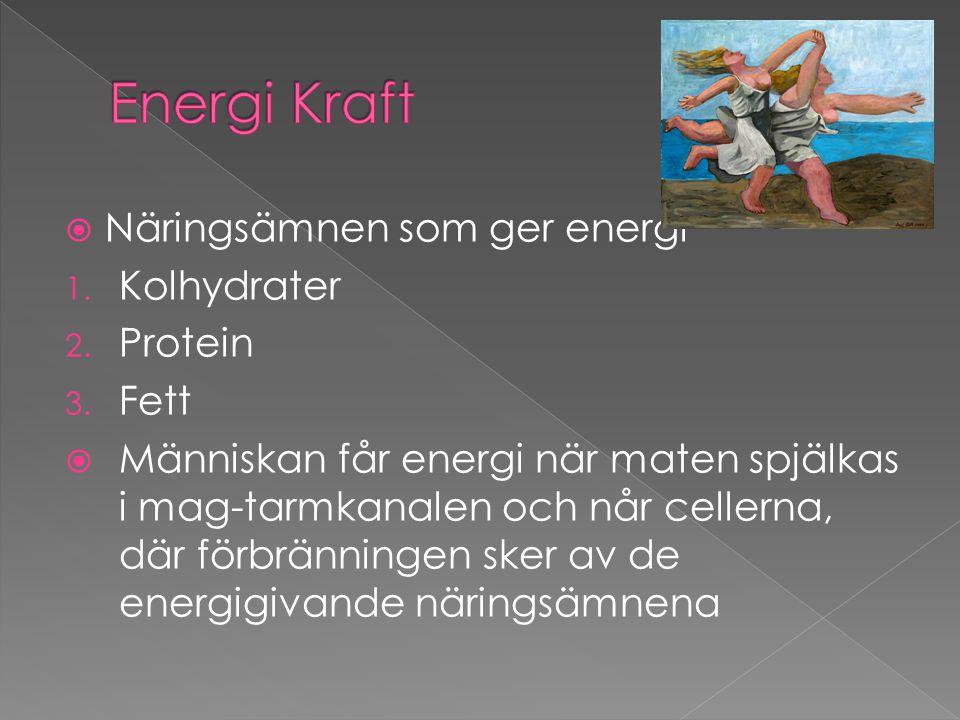 Energi Kraft Näringsämnen som ger energi Kolhydrater Protein Fett