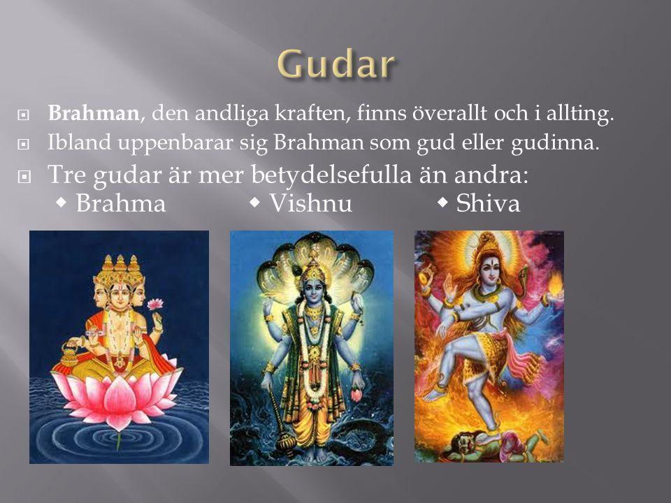 Gudar Brahman, den andliga kraften, finns överallt och i allting. Ibland uppenbarar sig Brahman som gud eller gudinna.