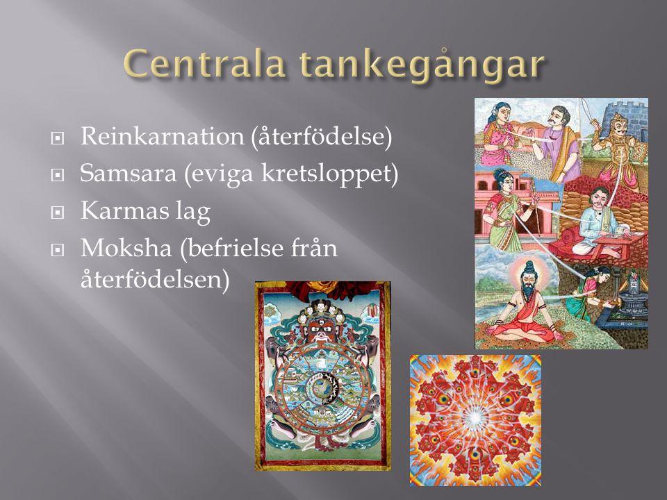 Centrala tankegångar Reinkarnation (återfödelse)