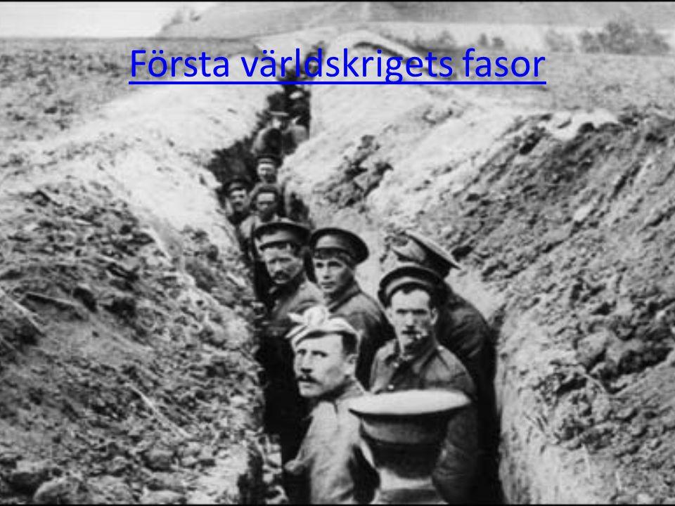 Första världskrigets fasor