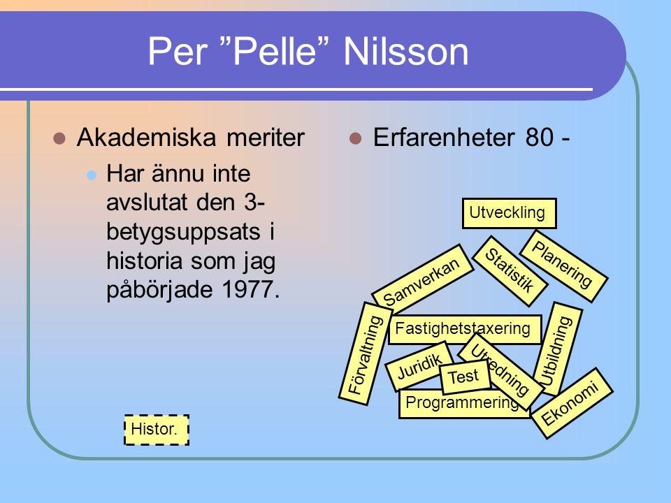 Per Pelle Nilsson Akademiska meriter Erfarenheter 80 -