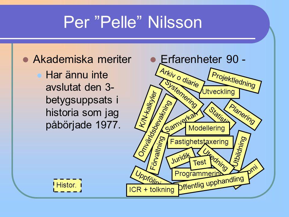 Per Pelle Nilsson Akademiska meriter Erfarenheter 90 -