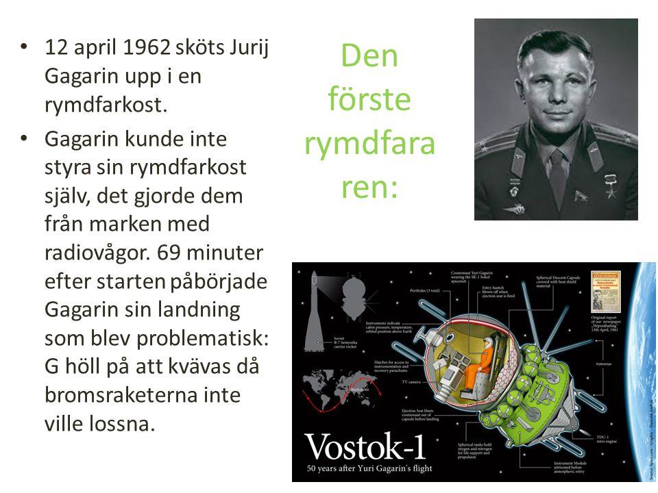 Den förste rymdfararen: