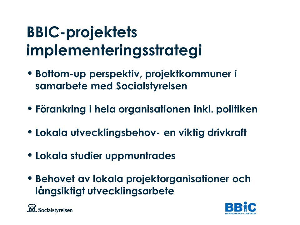 BBIC-projektets implementeringsstrategi