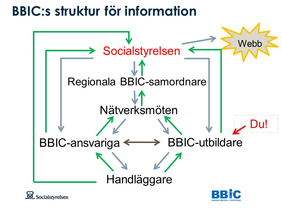 BBIC:s struktur för information
