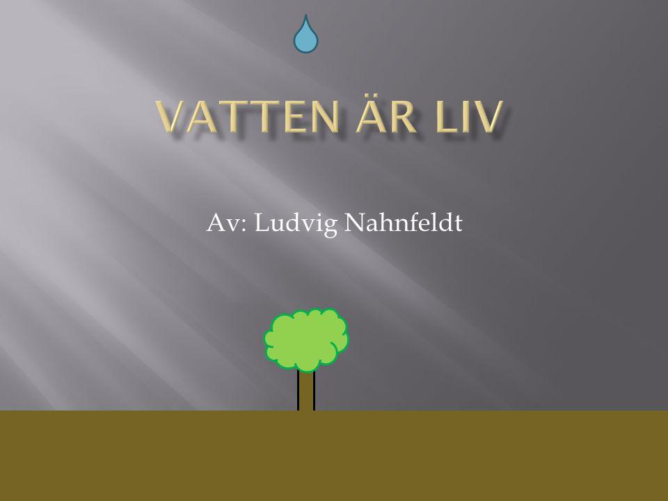 Vatten är liv Av: Ludvig Nahnfeldt