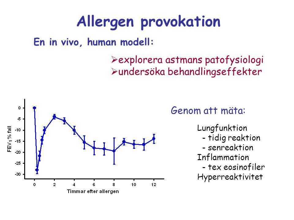 Allergen provokation En in vivo, human modell: