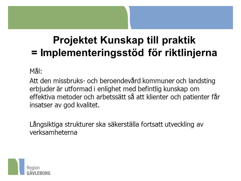 Projektet Kunskap till praktik = Implementeringsstöd för riktlinjerna