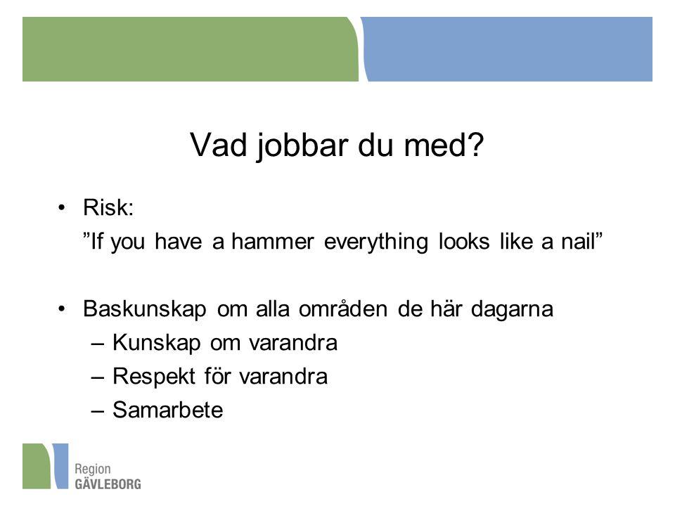 Vad jobbar du med Risk: If you have a hammer everything looks like a nail Baskunskap om alla områden de här dagarna.