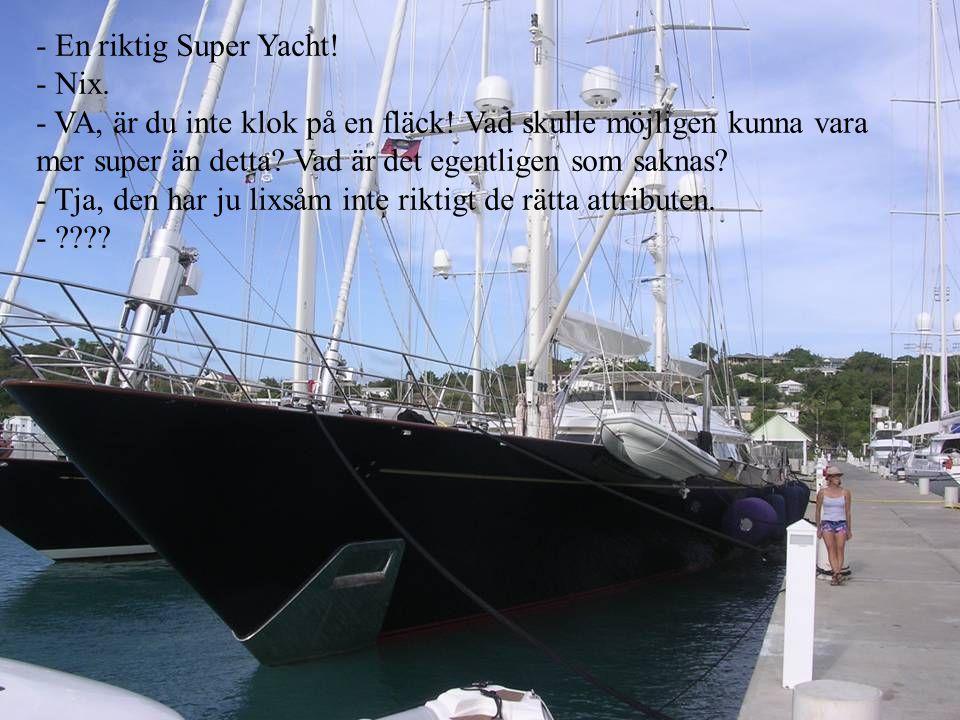 En riktig Super Yacht! Nix. VA, är du inte klok på en fläck! Vad skulle möjligen kunna vara mer super än detta Vad är det egentligen som saknas