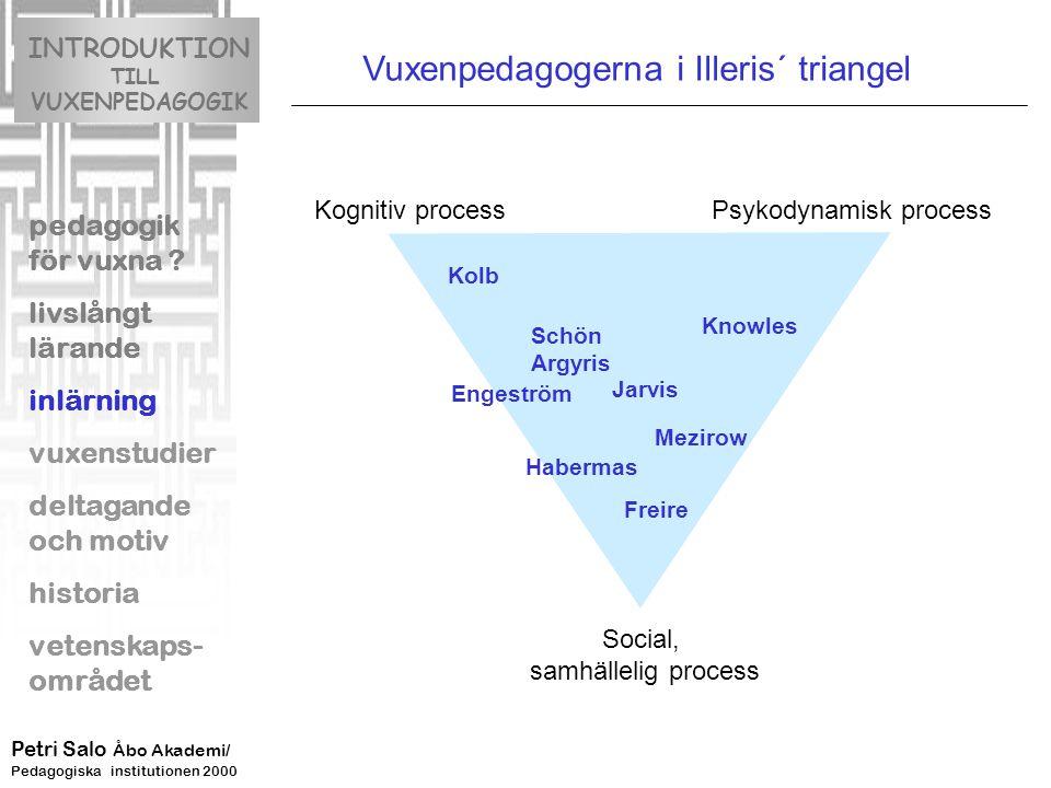 Vuxenpedagogerna i Illeris´ triangel