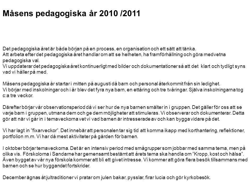 Måsens pedagogiska år 2010 /2011