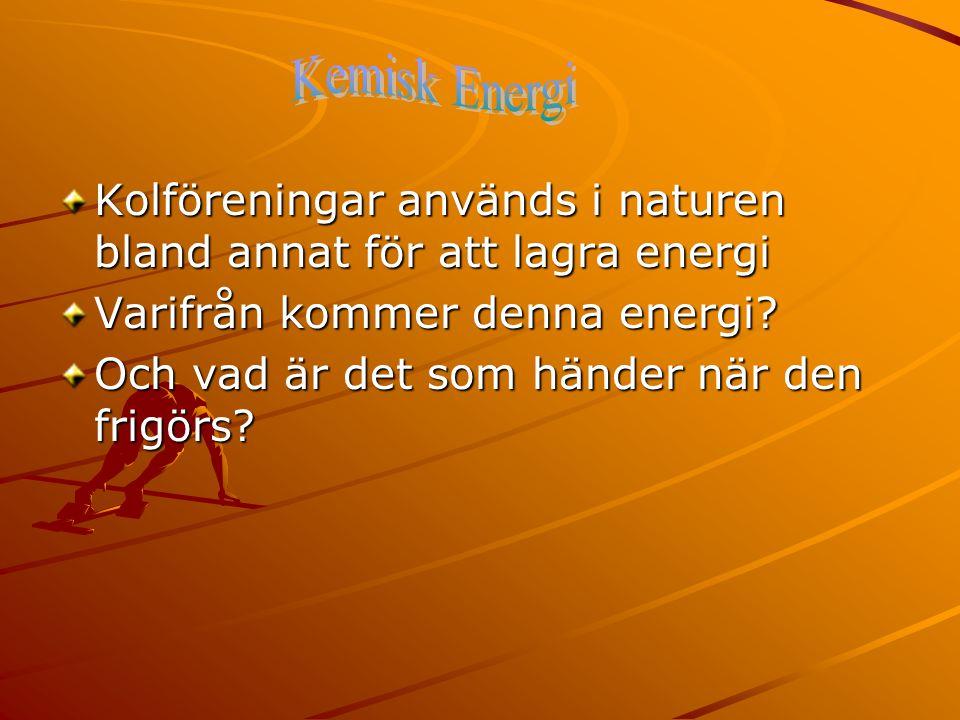 Kemisk Energi Kolföreningar används i naturen bland annat för att lagra energi. Varifrån kommer denna energi
