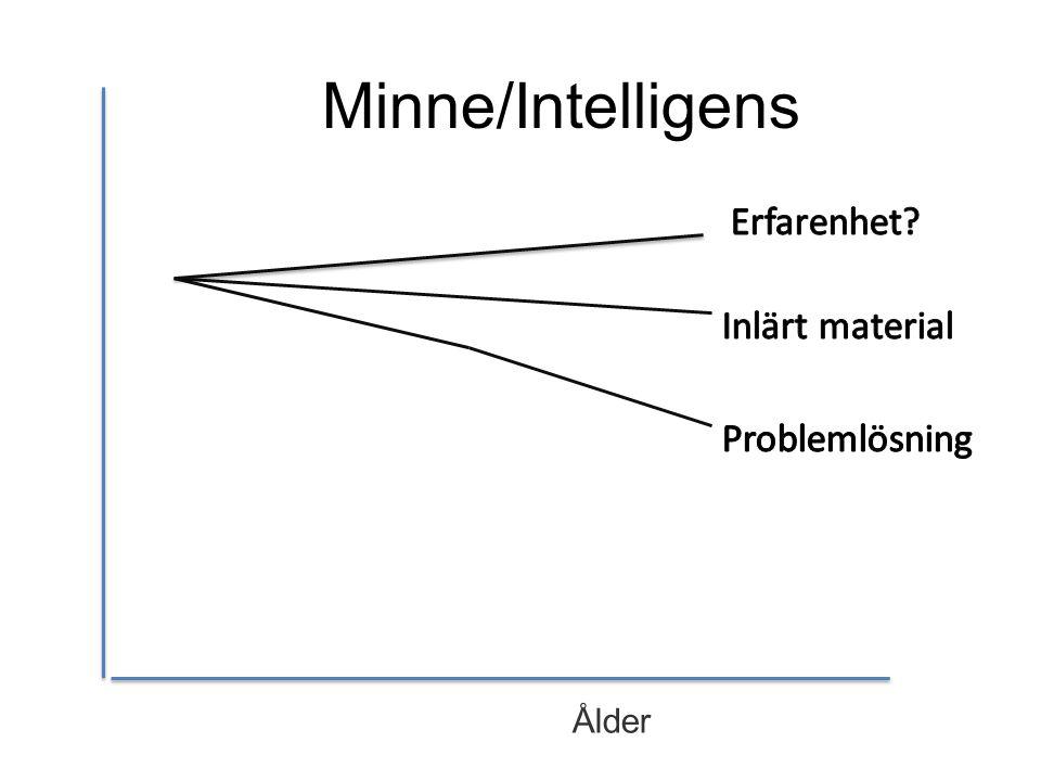 Minne/Intelligens Erfarenhet Inlärt material Problemlösning Ålder