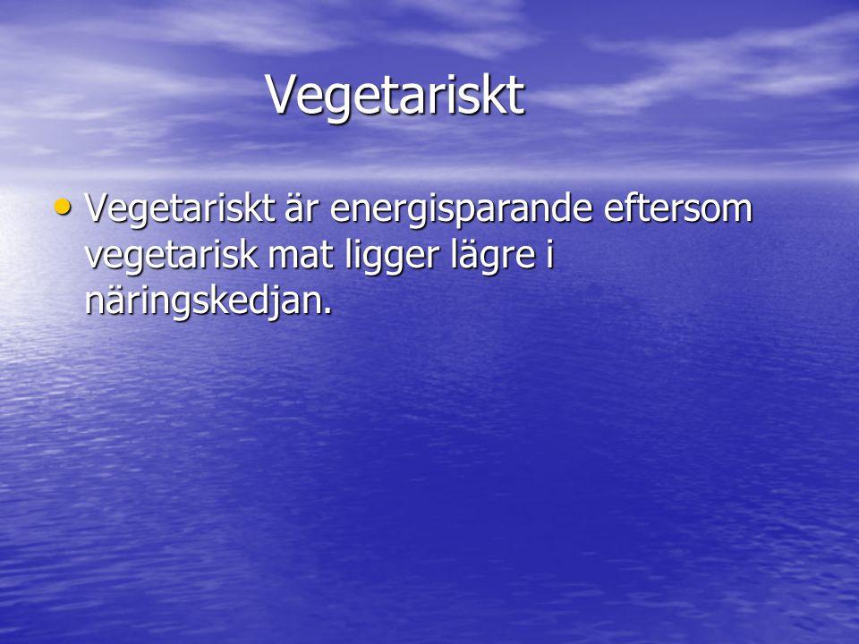 Vegetariskt Vegetariskt är energisparande eftersom vegetarisk mat ligger lägre i näringskedjan.