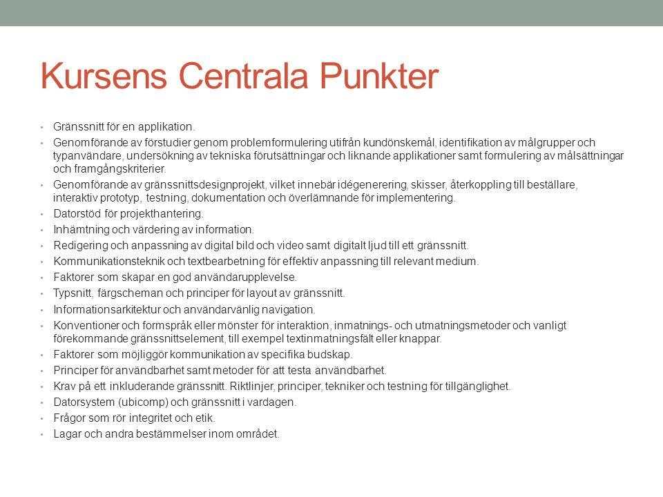 Kursens Centrala Punkter