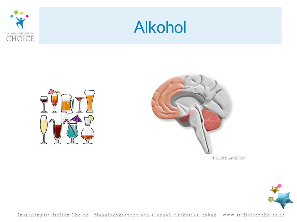 Alkohol ©2009 Hjärnguiden