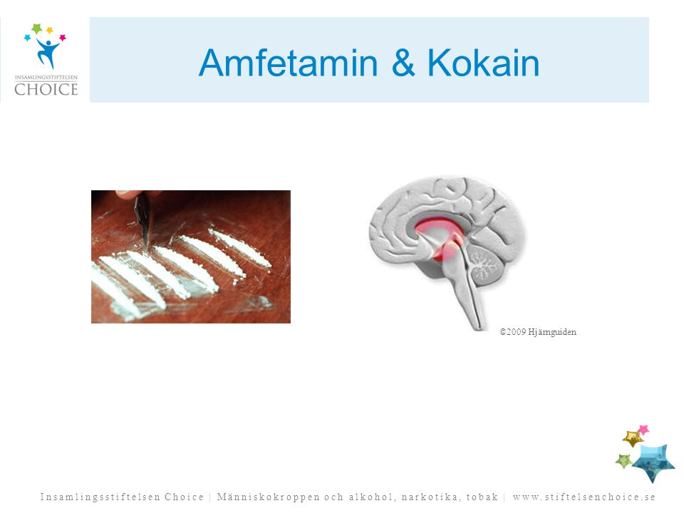Amfetamin & Kokain ©2009 Hjärnguiden.