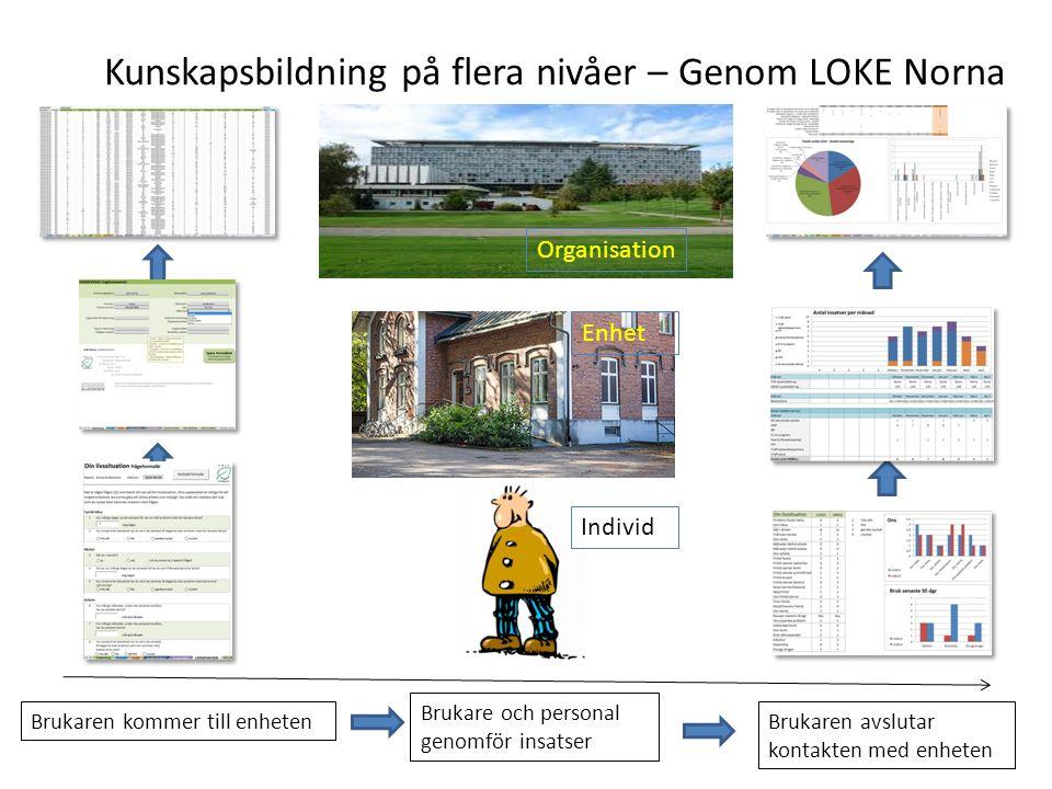 Kunskapsbildning på flera nivåer – Genom LOKE Norna
