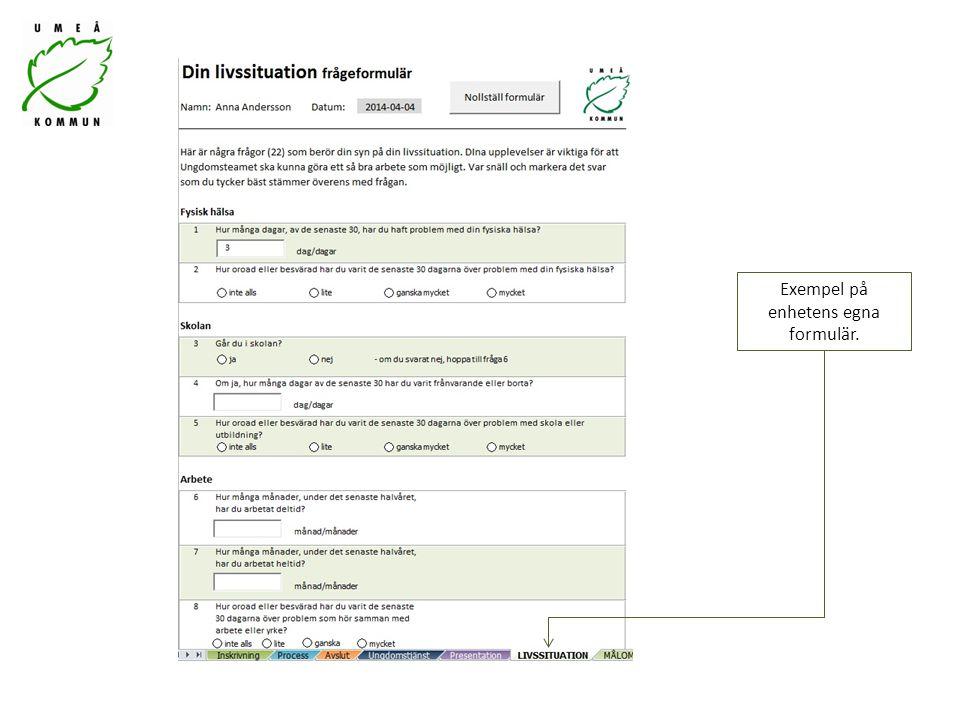 Exempel på enhetens egna formulär.