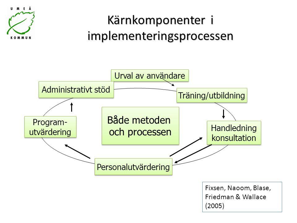 Kärnkomponenter i implementeringsprocessen