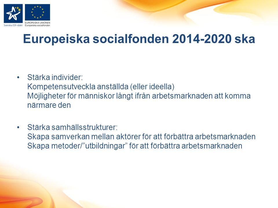 Europeiska socialfonden 2014-2020 ska
