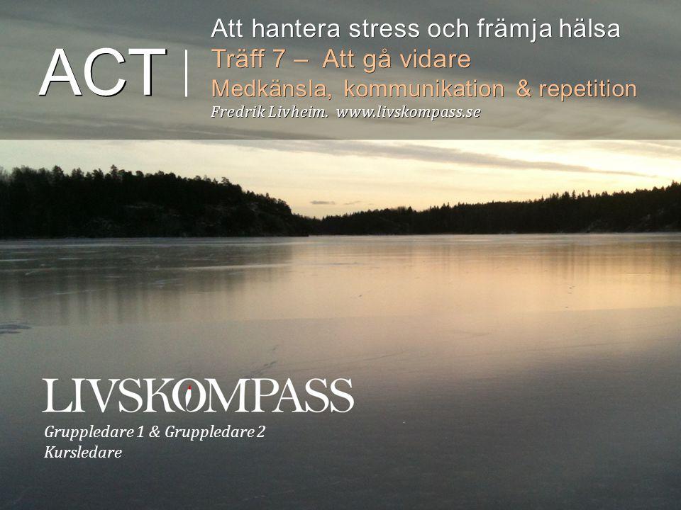 ACT Att hantera stress och främja hälsa Träff 7 – Att gå vidare