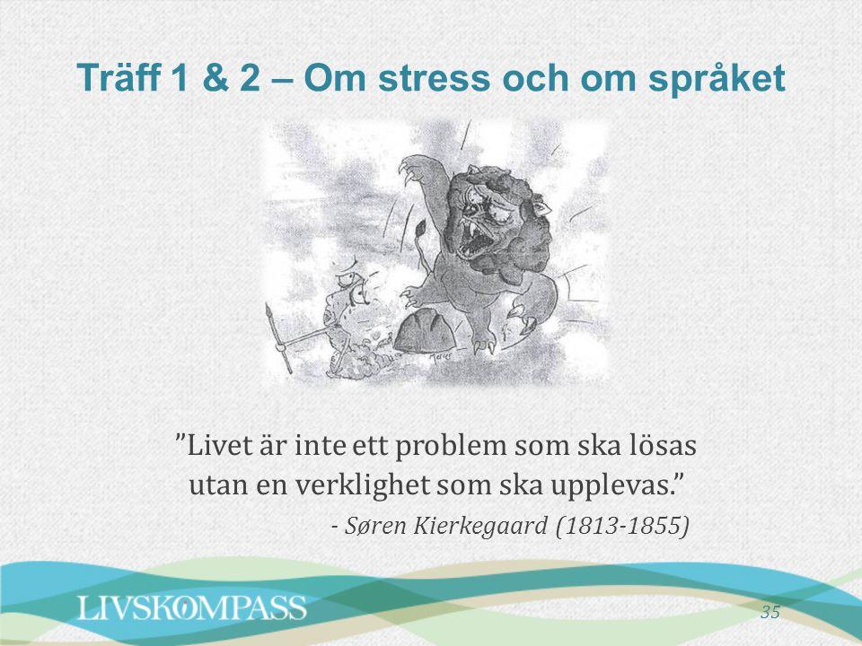 Träff 1 & 2 – Om stress och om språket
